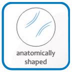anatomical shape